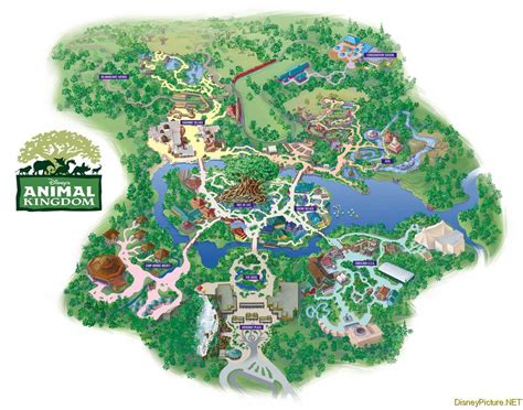 map of animal kingdom animal kingdom park map picture animal kingdom park map photo animal kingdom park map wallpaper