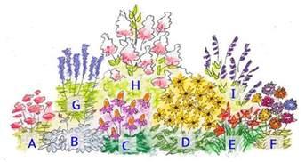 Cutting Flower Garden Design Diy Cut Flower Garden Enjoy Fresh Cut Flowers From Your Backyard Through Fall Pike