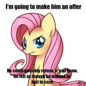 my little pony fluttershy dress memes
