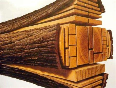 planche poutre coupe arbre