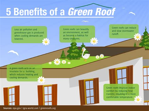 20 colleges embracing the green roof trend ideas inventions and innovations