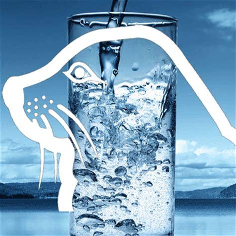Water Analyzers water analyzer