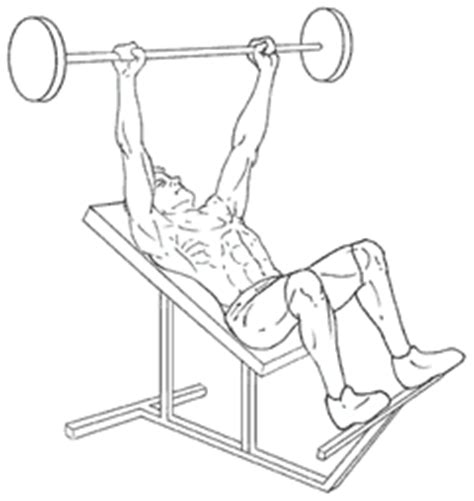incline bench press form incline bench press gymjp com