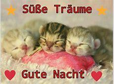 Pin von Jacqueline Lahndt auf Sprüche | Katzenbabys ... Funmail2u Kostenlos