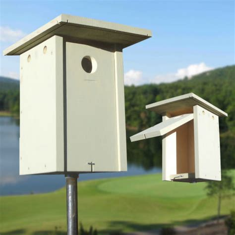 mountain bluebird house plans western and mountain bluebird house plans blue bird house plans complete detailed