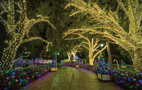 christmas town returns to busch gardens ta on the go