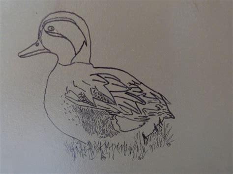 hutte oiseau quelques dessins chasseur d un jour chasseur