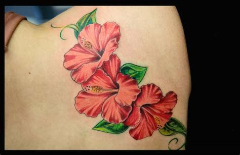 flowers and butterflies gallery tattoo zentrum l 252 beck