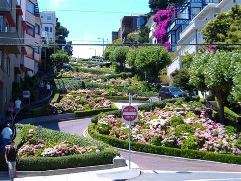 lombard street houses lombard street in san francisco i have almost the same exact pic from when i went i