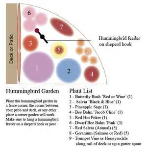 Hummingbird Garden Layout Hummingbird Garden For A Corner