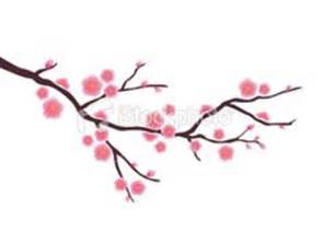Cherry blossom drawing best images collections hd for gadget windows