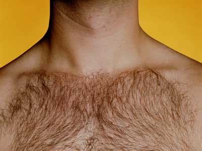 pictures of mens chest hair patterns function of body hair function of body hair howstuffworks