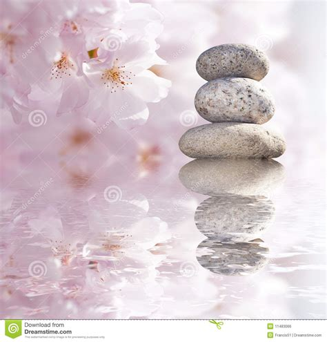 imagenes zen zen buddhist stones stock photo image of flowers