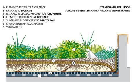sezione tetto giardino giardini pensili estensivi e tetti verdi macchia