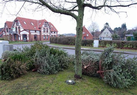 wann werden die weihnachtsbäume abgeholt sehestedt das dorf durch das ein kanal flie 223 t