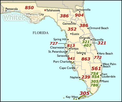 florida area code map whitepages find businesses more