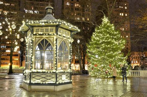 christmastree farms philadelphia america s best trees huffpost