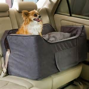 Dog travel and car anxiety dog life and style