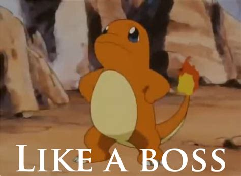Like A Boss Know Your Meme - like a boss charmander like a boss know your meme