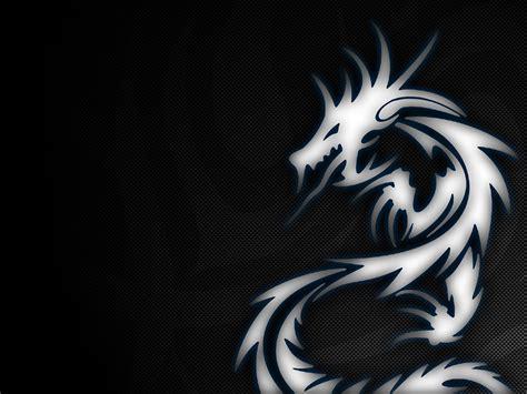 Descargar Home Design 3d Para Mac by Cool Dragon Hd Wallpaper Backgrounds Free Download