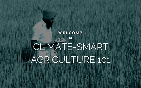 Mba In Agribusiness In Bangladesh by Climate Smart Solutions For Mali Climate Smart