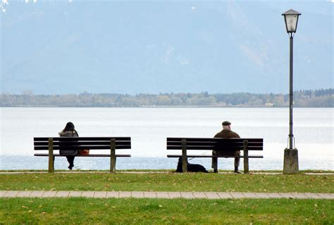 benching someone people on bench public domain free photos for download