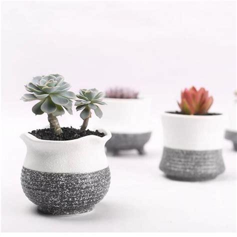 Gardener S Supply Flower Pot 1pcs Garden Mini Ceramic Flower Pot Vase Bonsai Planter