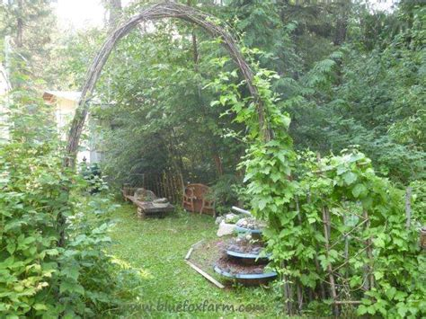 Garden Arch Rebar Twig Archway A Rustic Tunnel Or Arch For Your Garden Vines