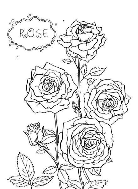 free coloring pages flowers roses rose flowers coloring pages flower coloring pages of