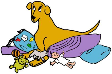 how often do dogs get their period false pregnancy canine mar vista animal center