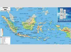 Jual Deep Beauty Squalane HPAI Asli di Jogjakarta - TOKO ... Cdtm