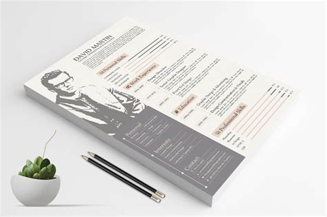 Professional Resume Design Templates by Simple Yet Frofessional Resume Cv Design Templates