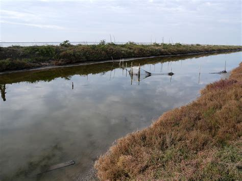 pesca acque interne il bracconaggio ittico nelle acque interne arriva in
