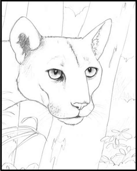 dibujos de animales en peligro de extincion para colorear imagui animales archivos mariposas para colorear