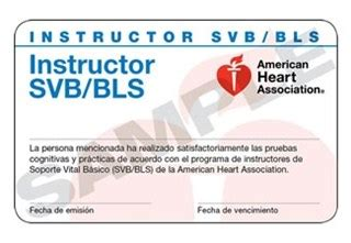 bls instructor card template 15 2300 bls instructor cards 24