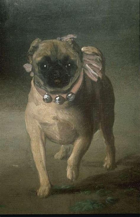 pugs in paintings up of the pug in francisco de goya s painting francisco de goya painter