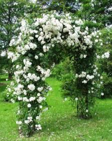 Trellis Archway Rosenbogen Aus Eisen Classic Garden Elements