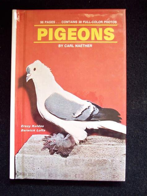 pigeon picture books my pigeon books library berwick lofts ersoy koldas