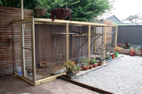 backyard cat enclosure sarah bell smith worlds best cat enclosure