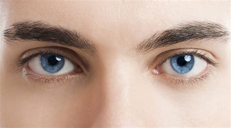 the eyes of the all about your eyes essilor australia