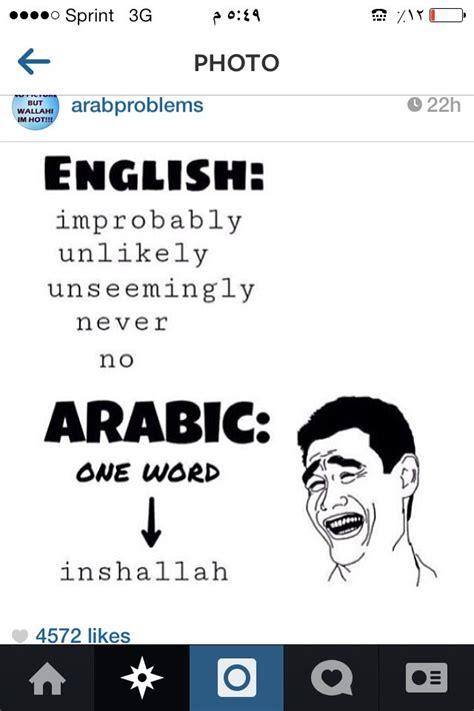 Arab Memes Tumblr - 25 best ideas about arabic funny on pinterest arab