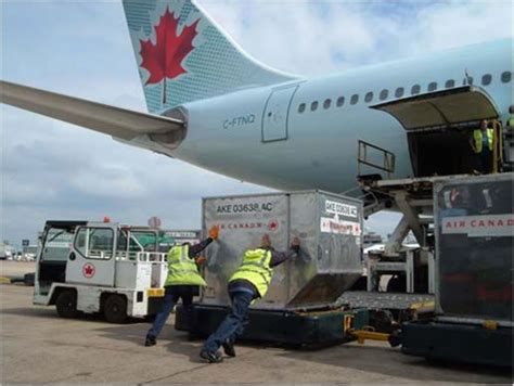 air canada a power needed to push container to cargo loader airport vehicles