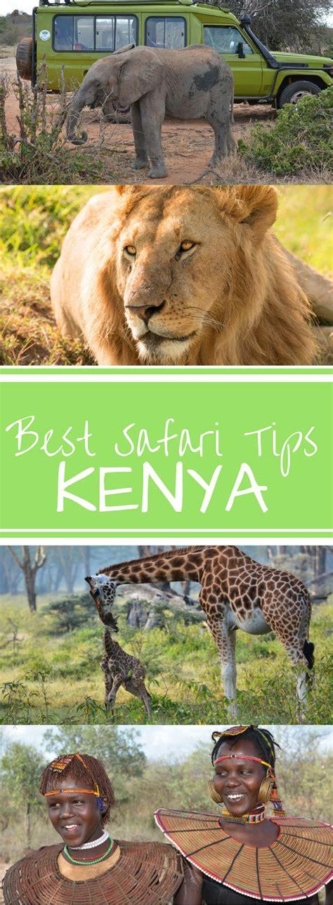 best safari in kenya best 25 kenya ideas on kenya africa nation