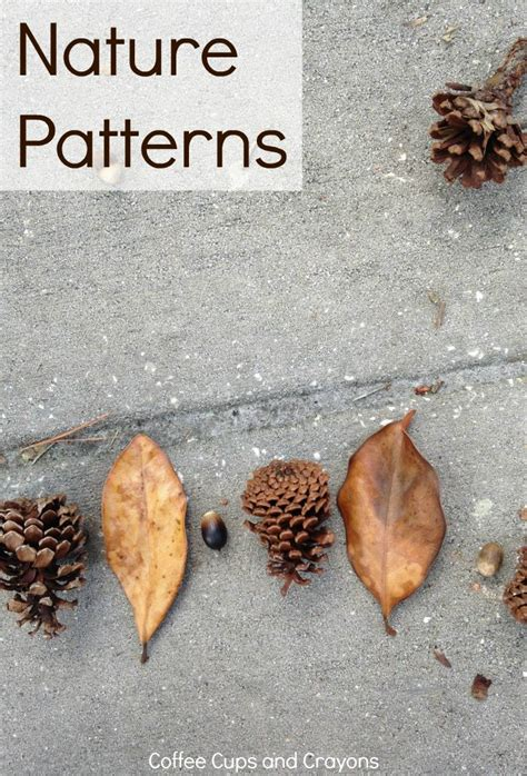 patterns in nature art activities math patterns in nature coffee cups and crayons