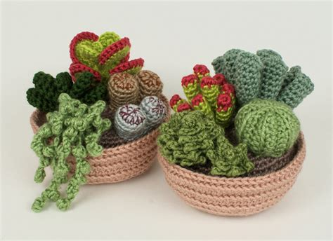 pattern crochet cactus succulent collections 1 and 2 eight crochet patterns