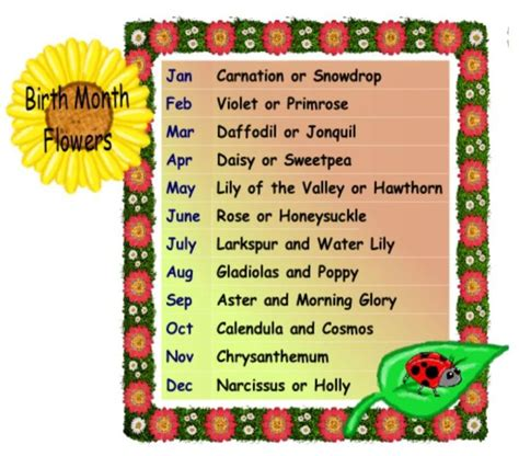 birth date meaning personality 33 best images about flower meanings on pinterest