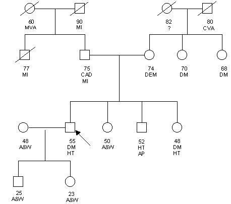 Family Genogram Maker Template Business Genogram Maker