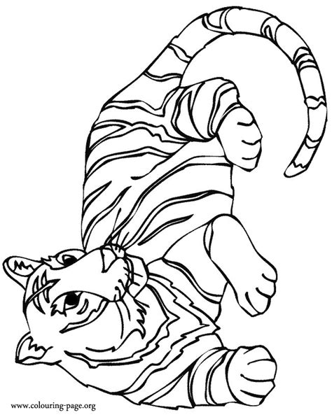 stripeless tiger coloring page outline of a tiger coloring pages