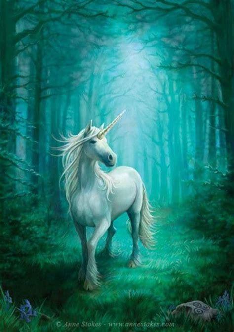 unicorn beautiful