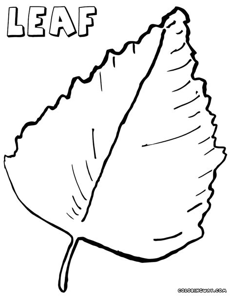 printable big leaves big leaf coloring pages coloring pages